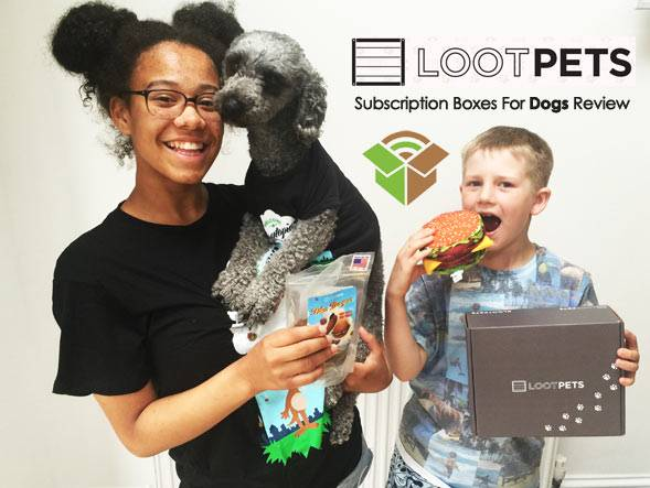 Best Dog Subscription Boxes